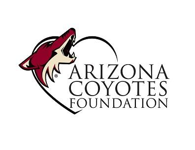 Arizona Coyotes 3